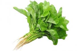 organic amaranth
